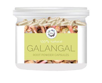 Galangal (Alpinia galanga) Root Powder Capsules