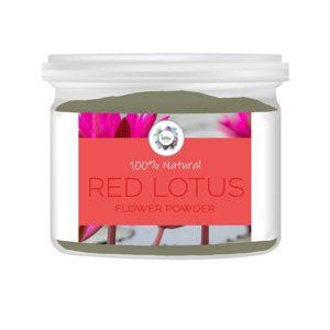 Red Lotus (Nymphaea rubra) Flower Powder