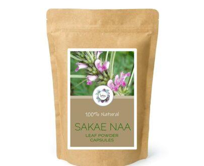 Sakae Naa (Combretum quadrangulare) Leaf Powder Capsules