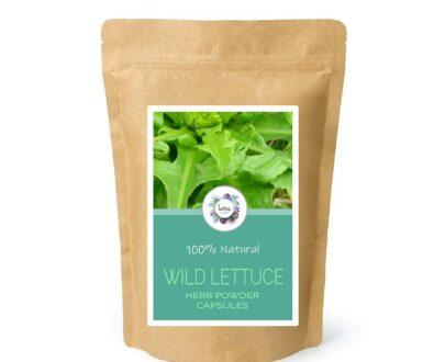 Wild Lettuce (Lactuca virosa) Herb Powder Capsules