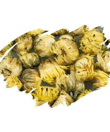 Chrysanthemum (Chrysanthemum morifolium) Dried Flowers