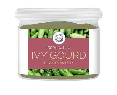 Ivy Gourd (Coccinia grandis) Leaf Powder