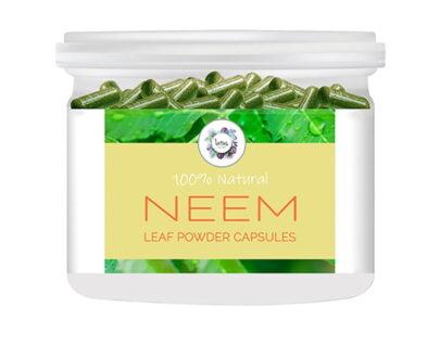 Neem (Azadirachta indica) Leaf Powder Capsules