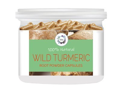 Wild Turmeric (Curcuma aromatica) Root Powder Capsules